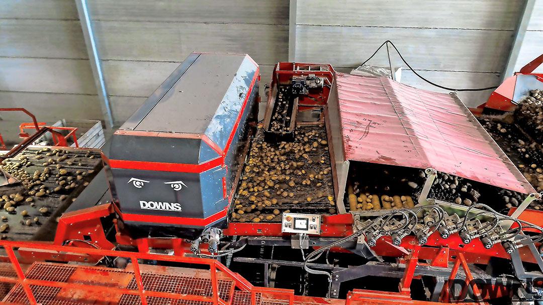 Downs CropVision verwijdert ongewenst materiaal uit de aardappelstroom, zodat dit geen kostbare opslagruimte inneemt. Foto: Downs.