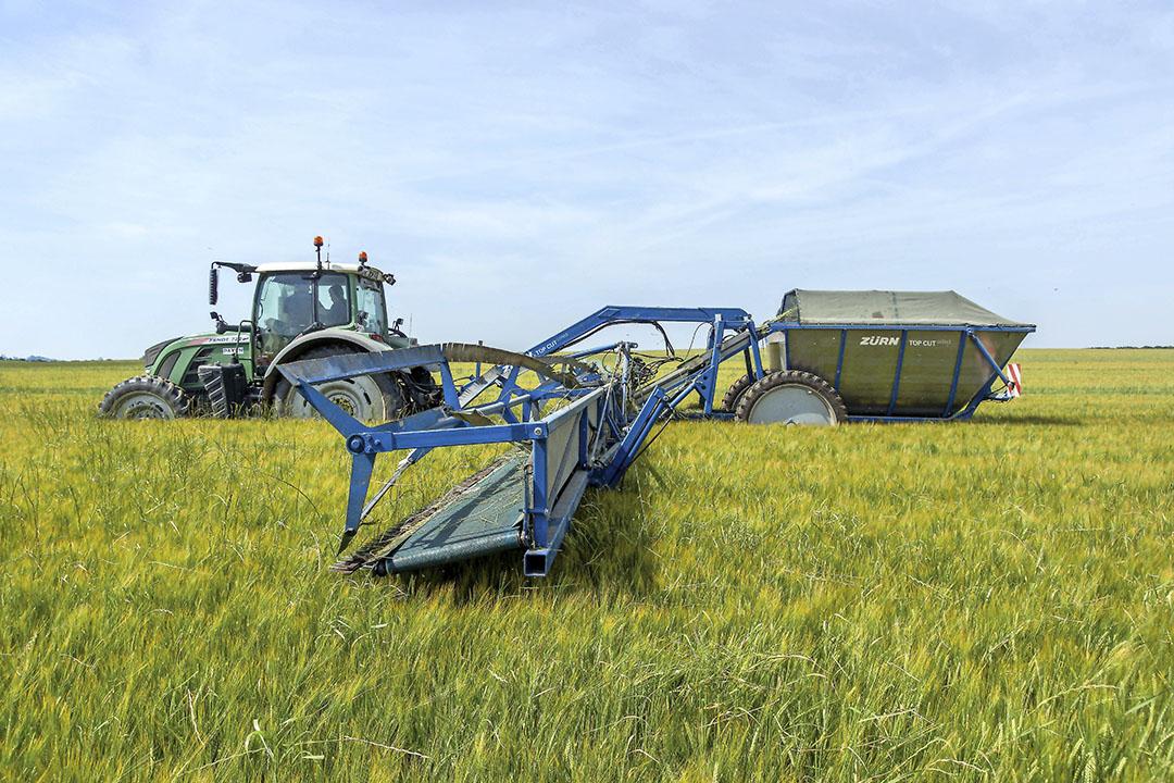 Onder de noemer 'Agro-ecological transtion' kreeg de Zürn Top Cut Collect-onkruidmaaier een innovatieprijs. Foto: Zürn Harvesting.